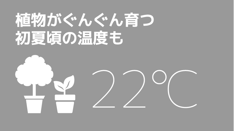 植物がぐんぐん育つ初夏頃の温度もは22℃。